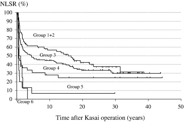 Survival Curve reported by Dr Nio, et al.